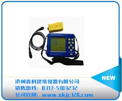 ZBL-R620混凝土钢筋检测仪