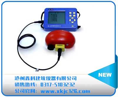 ZBL-R630混凝土钢筋检测仪